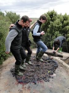 Rioja 031