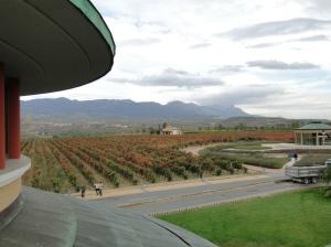 Rioja 125