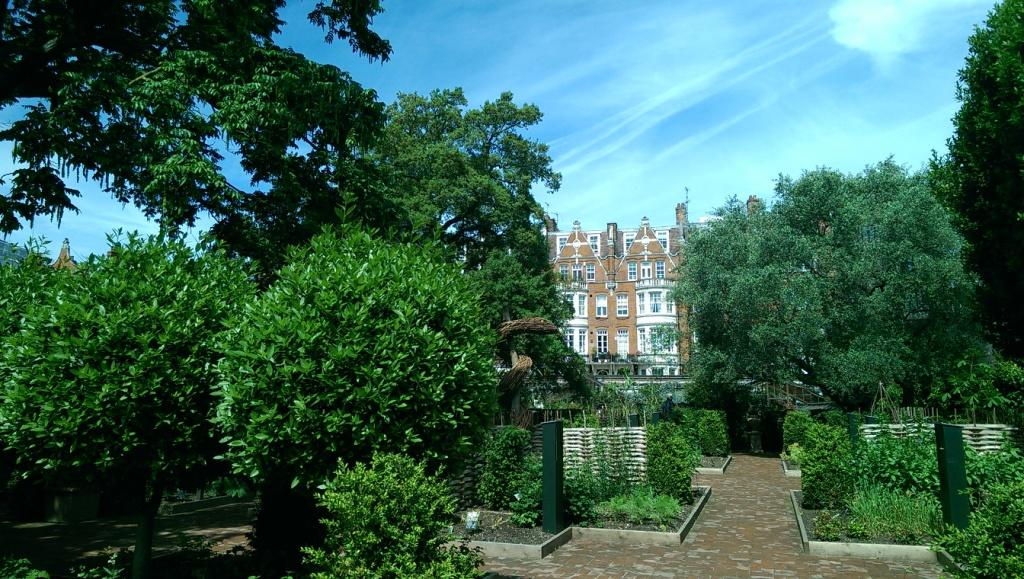 Chelsea physic garden le jardin botanique le plus secret for Jardin du nil red wine