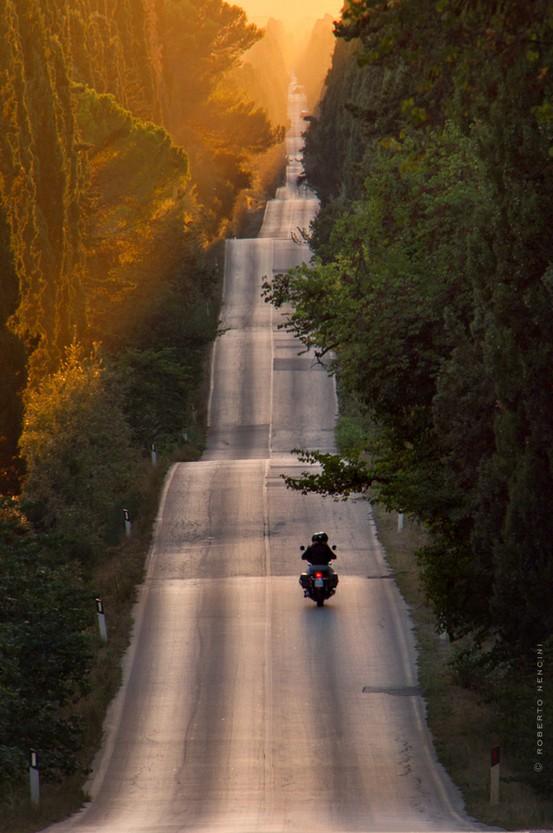 Bolgheri-Tuscany