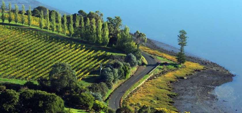 tasmania-roads-bike-tour